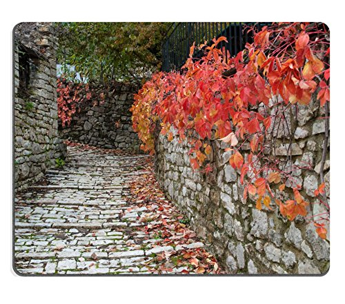 luxlady-natural-rubber-gaming-mousepads-road-with-red-leaves-in-a-traditional-village-epirus-greece-