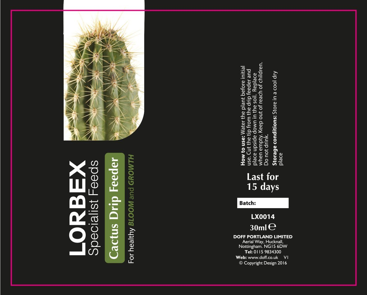Lorbex Cacti Plant Drip Feeders 5 Pack, Multi-Colour DOFF PORTLAND LX0014