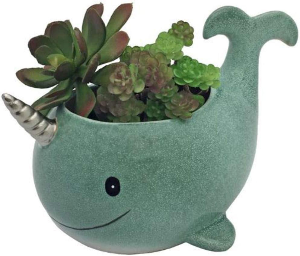 Streamline Narwhal Ceramic Planter Pot
