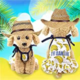 Pet Puppy Round Neck Dress Clothes,Spring and Summer Pearl Banana Skirt Dog Costumes Pet Dress Clothes (Yellow, XS)