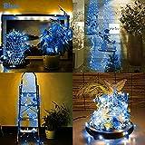 Solar LED String Light, Elevin(TM) 2M 20LED Solar Cork Wine Bottle Stopper Copper Wire String Lights Fairy Lamps (Bule)