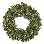 National-Tree-24-Inch-Crestwood-Spruce-Wreath-with-Silver-Bristles-Cones-Red-Berries-and-50-Battery-Operated-Warm-White-LED-Lights-with-Timer-CW7-306-24W-B1