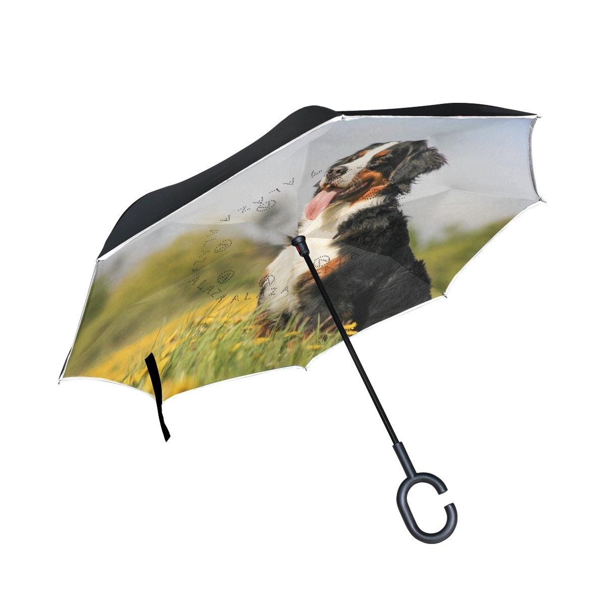 My Daily Paraguas invertido Doble Capa para Coches, Paraguas de Montañ a de Bernesa, para Perro, Flores, Campos, Resistente al Viento, Resistente a los Rayos UV, Paraguas de Viaje al Aire Libre Paraguas de Montaña de Bernesa