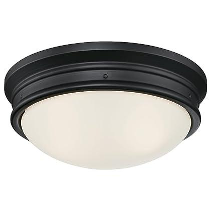 Amazon.com: Westinghouse Lighting 6324100 Meadowbrook ...