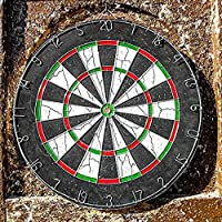 Brand Conquer 17 inch Double Faced Flock Printing Thickening Family Game Dart Board with 6 Needle (17 x 17-inch)