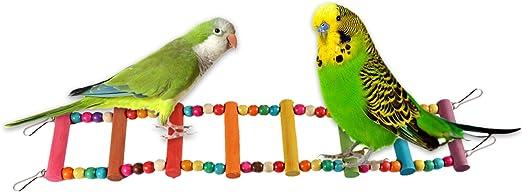 Escalera para loro, diseñador de madera, escalera para mascotas, juguete para pájaros – Rainbow para colgar, escalada, puente, columpios para loros, mascotas, pájaros: Amazon.es: Productos para mascotas