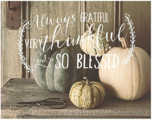 Blessed Thankful Jada Venia Light Box Insert