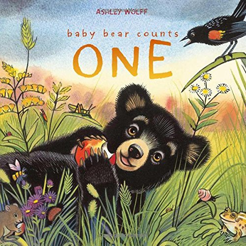 Download Baby Bear Counts One PDF