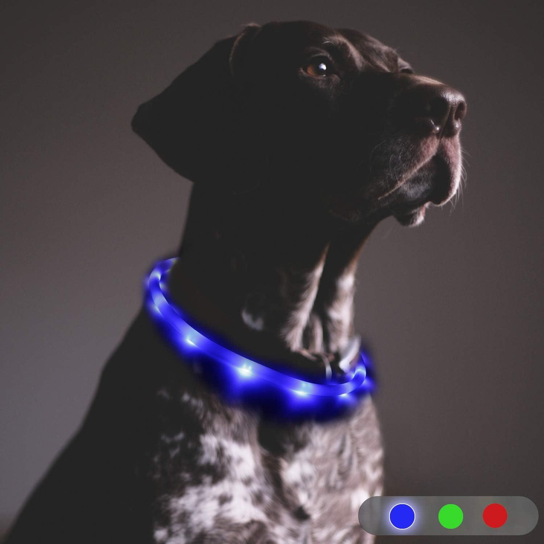 Toozey LED Collar de Perro - luz Continua Durante 20 Horas ...