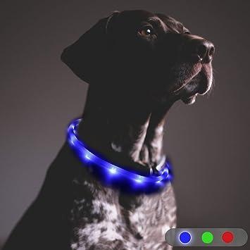 Toozey LED Collar de Perro - luz Continua Durante 20 Horas - Collar de Perro de Seguridad de Noche Ajustable Recargable con USB para Perros y Gatos - ...