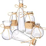 Nilos Glass Vases Set of 6, Clear Glass Flower Vase with Rope Design and Differing Unique Shapes for Wedding, Dinning, Home D