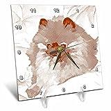 3dRose dc_51412_1 Brown Pomeranian Dog Sketch Animal Art Pets Desk Clock, 6 by 6-Inch