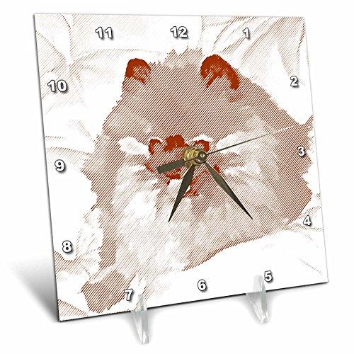 3dRose dc_51412_1 Brown Pomeranian Dog Sketch Animal Art Pets Desk Clock, 6 by 6-Inch by 3dRose