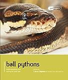 Ball Pythons - Pet Expert