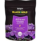 Sun Gro Horticulture Black Gold African Violet Mix