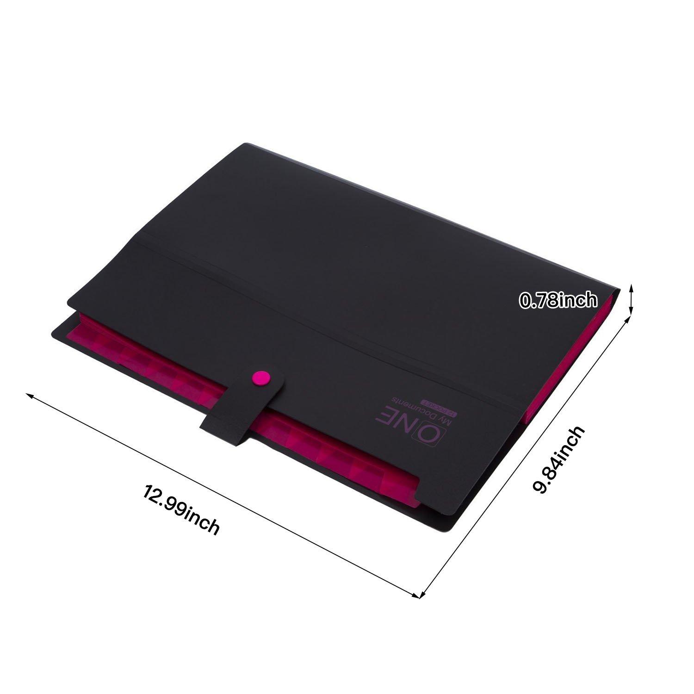 Carpeta archivadora tipo acordeón con 12 compartimentos, tamaño A4: Amazon.es: Oficina y papelería