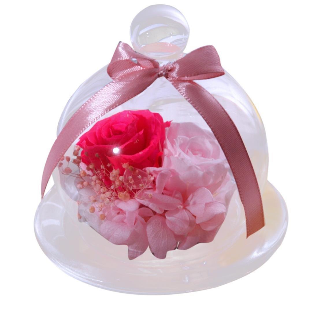 Amazon.com : Valentine Day\'s Gift, SUKEQ Handmade Preserved Flower ...