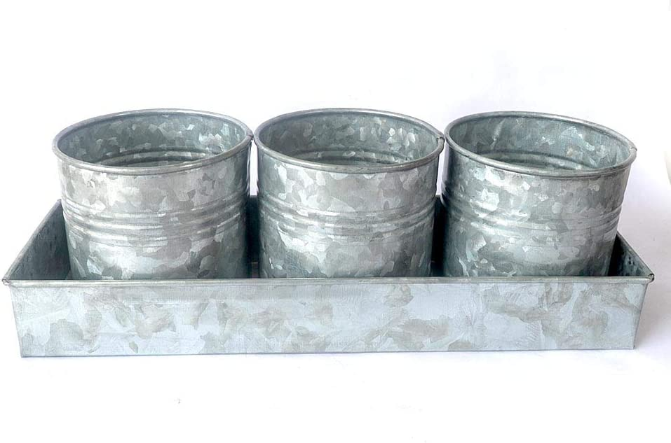 NIRMAN Set of 3 Galvanized Planter with Tray for Herbs, and Small Plants, Ideal for Party Wedding Country Picnic Caddy Serve Ware Floral Pots Votive Candle