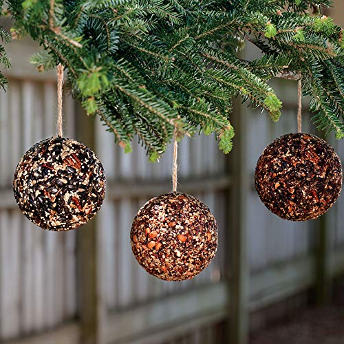 Cheap Park Seed Seed & Nut Ornament Balls (Set/3), Hanging Bird Seed, Gift, Christmas