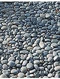 Mexican Beach Pebble, Black, 1-2''