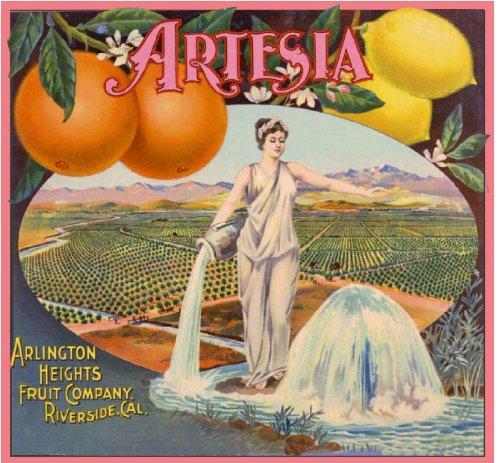 - A SLICE IN TIME Arlington Heights Riverside Artesia Orange Citrus Fruit Crate Label Art Print