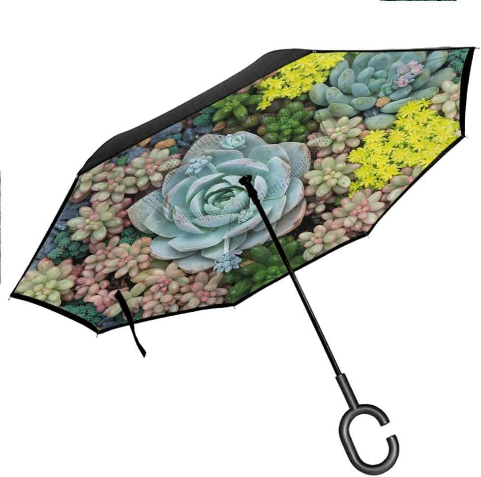 Windproof Double Layer Folding Inverted Umbrella Miniature Plants Stones Self Stand Upside-Down Rain Protection Car Reverse Umbrellas with C-Shaped Handle