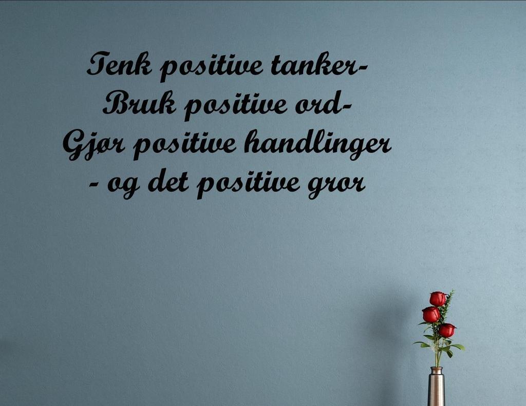 Amazon.com: Tenk positive tanker- Bruk positive ord- Gjør positive ...