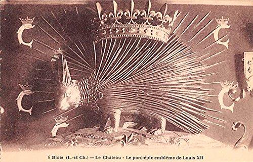 Le Chateau, Le Porc epic embleme de Louis XII Blois France Postcard ()