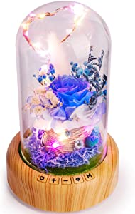 SWEETIME Blue Rose Lamp Real Preserved Rose in Glass Dome, Forever Flower Night Light with Bluetooth Speaker, Eternal Flowers Rose Gift for Her on Mother's Day, Birthday, Valentine Day.