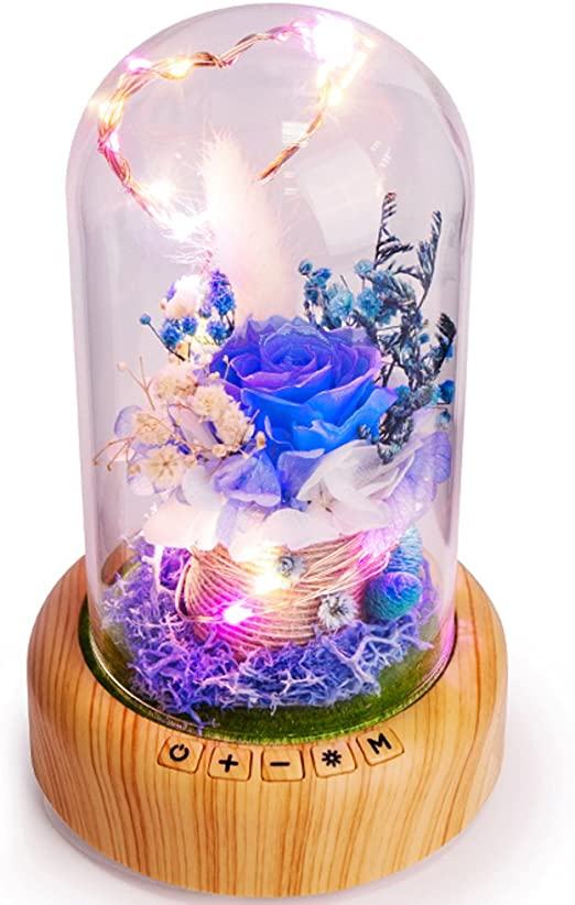 Bed Room Decoration Beauty And The Beast Enchanted Rose Light Up Your Rooms
