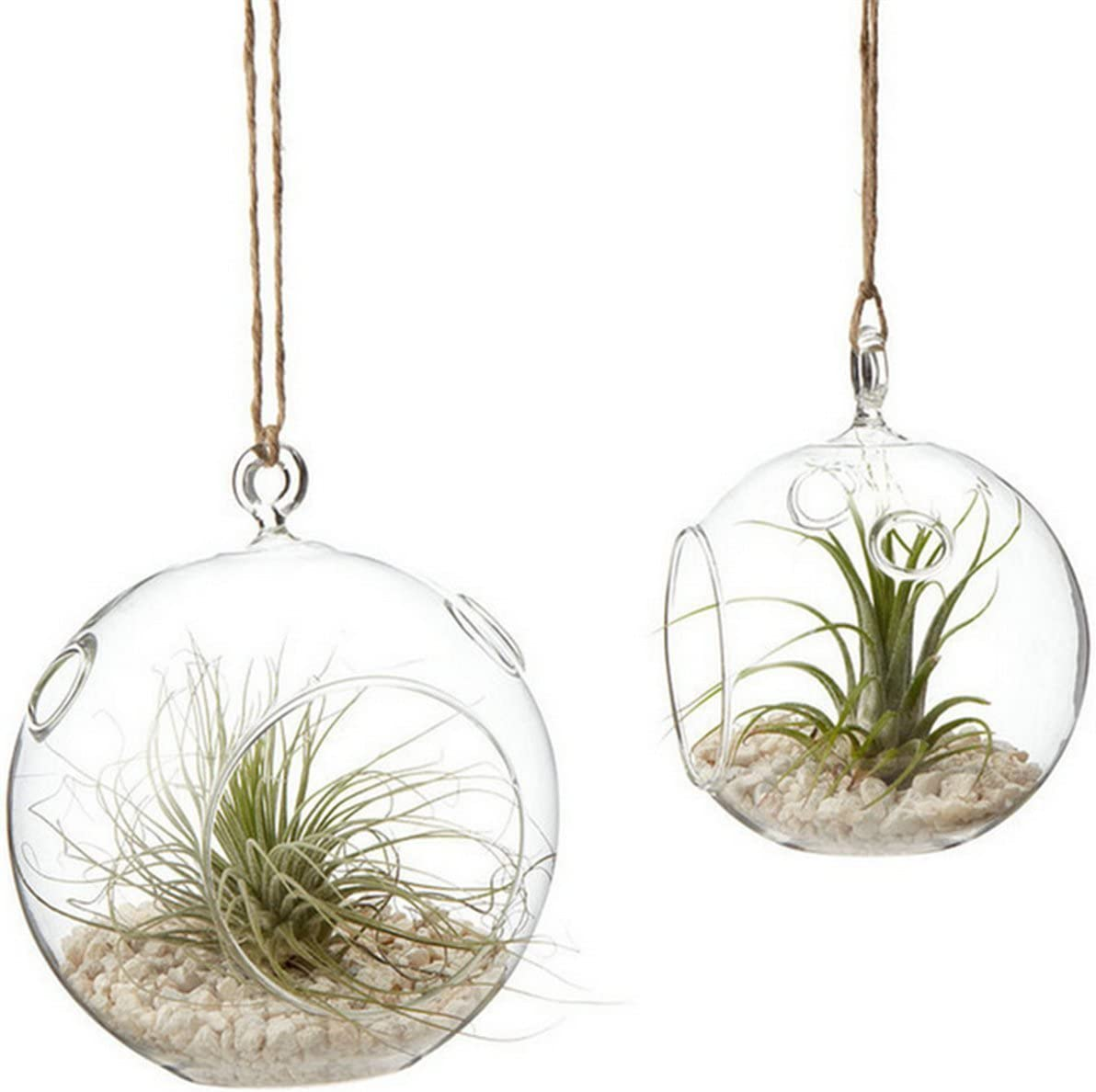 Kingbuy Hanging Glass Terrariums for Succulents and Air Plants, Large Glass Orb Planters set of 2 12cm