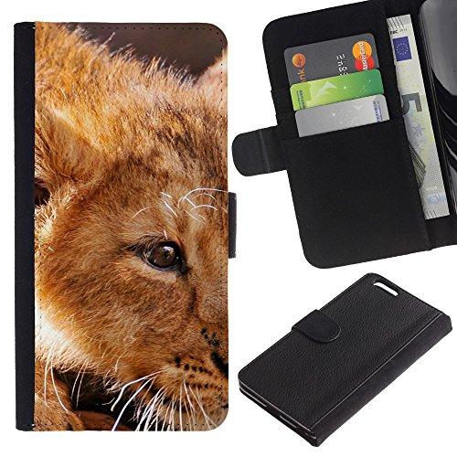 iKiki Tech / Etui Coque Housse de Protection en Cuir - Ginger Lion Cub Cute African King Animal - Apple iPhone 6 Plus 5.5