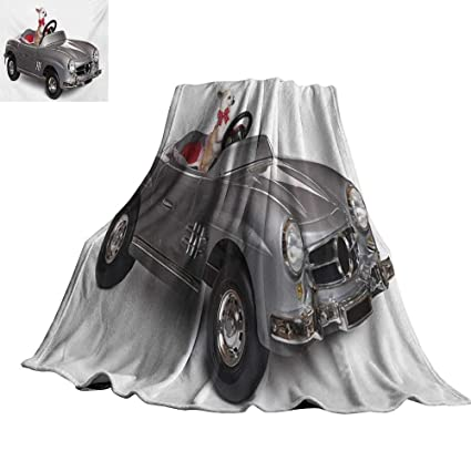 Amazon.com: RenteriaDecor Dog Driver,Bed Blankets Chihuahua ...
