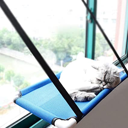 Amazon.com  Lightton Cat Window Perches 308868a356