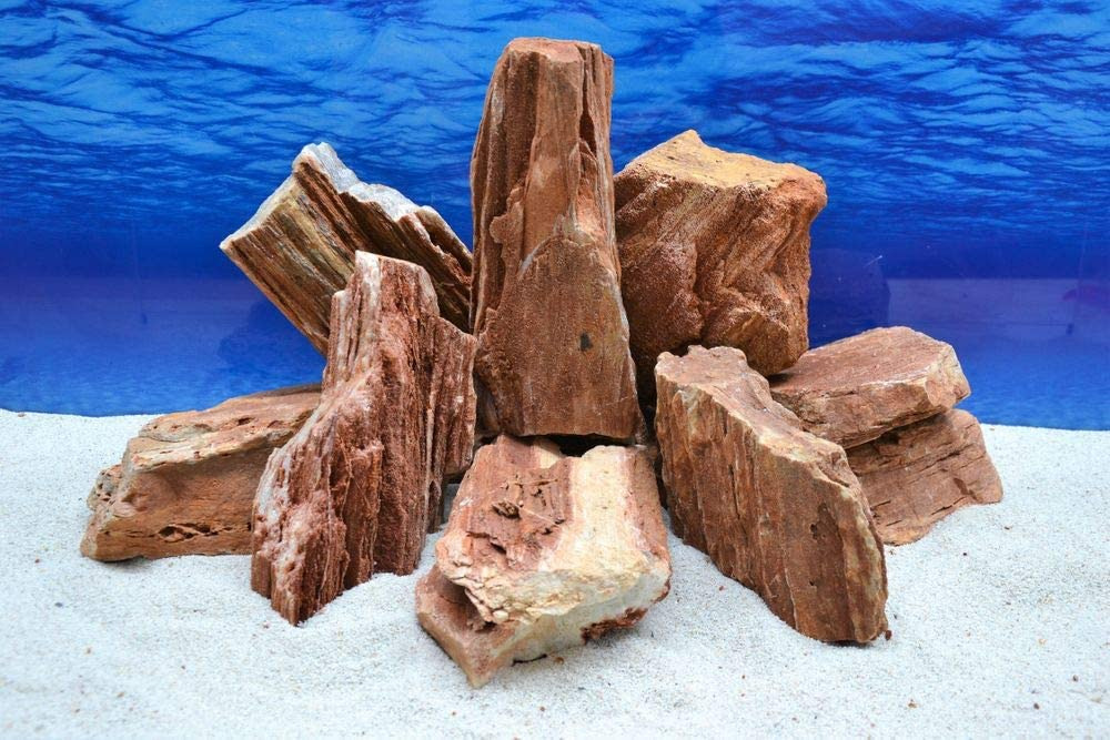 Pro Stone Petrified Wood In Red Brown 2 3 Kg Aquascaping Aquarium Fish Tank Ornament 52 Amazon De Pet Supplies
