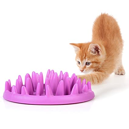 Pet Supplies 2019 New Style Catch Interactive Cat Feeder