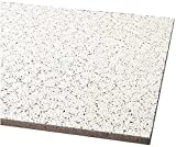 Armstrong World Industries BP823N Acoustical Ceiling Panel 823 Cortega Square Lay In, Plastic,  5'' x 48'' x 24'' (Pack of 8)