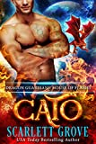 Download Cato: House of Flames (Dragon Guardians  Book 4) in PDF ePUB Free Online