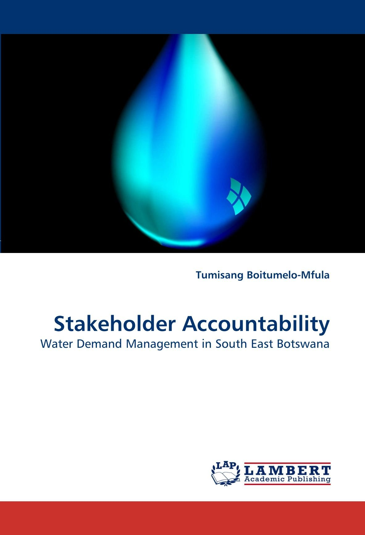 Stakeholder Accountability: Water Demand Management in South