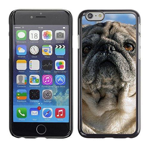 """Premio Sottile Slim Cassa Custodia Case Cover Shell // F00024556 Puppy extérieure // Apple iPhone 6 6S 6G PLUS 5.5"""""""