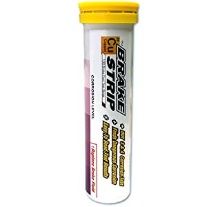 Phoenix Systems (3001-B) Brake Fluid Test Strips, 100 Test Strips Per Tube, BrakeStrip, FASCAR, Copper