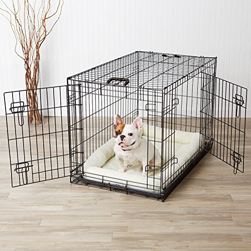 AmazonBasics Double-Door Dog Crate and Padded Bolster Bed -
