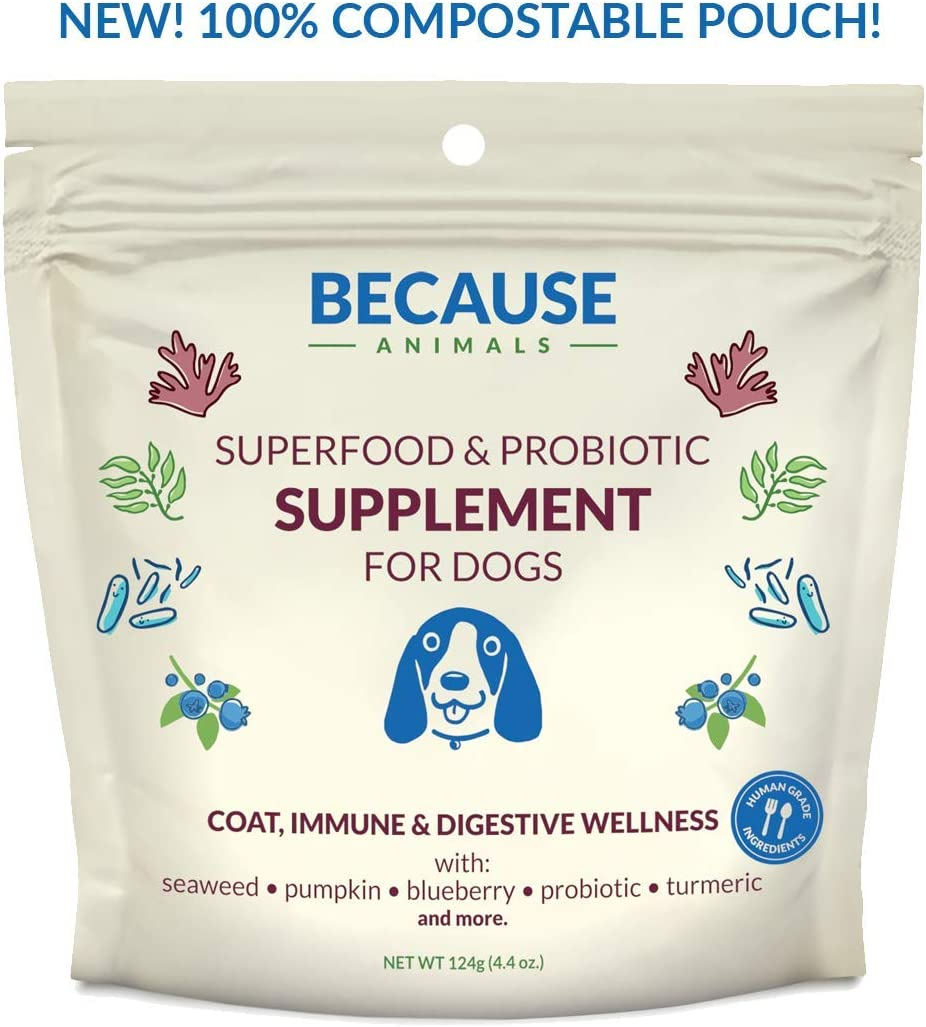Because Animals Superfood Probiotic Supplement for Dogs 4.4oz – All-Natural, Human-Grade Ingredients -with Vitamins, Minerals, Antioxidants and More for Better Digestion, Coat and Overall Health