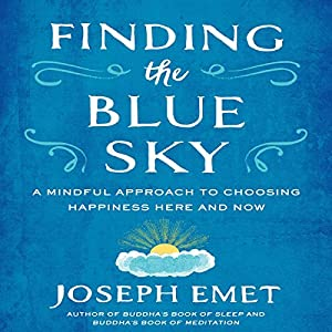 Finding the Blue Sky Audiobook
