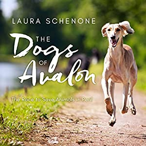 The Dogs of Avalon Audiobook