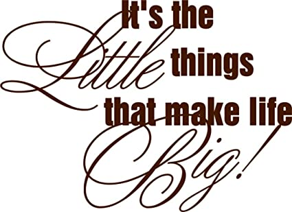 Amazon.com: It\'s All The Little Things Quotes - Kids Girls ...