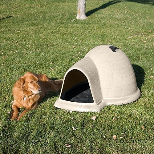 Petmate Indigo Dog House with Pad & Door - Large (43.8L x 34W x 25.8H in.) by Petmate