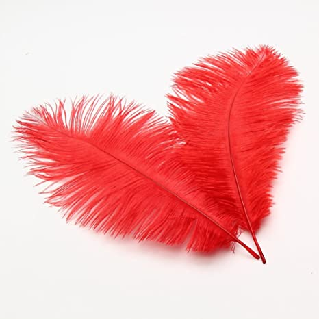 10pcs//Pack Ostrich Feathers Plume for Wedding Centerpieces Home Decoration US
