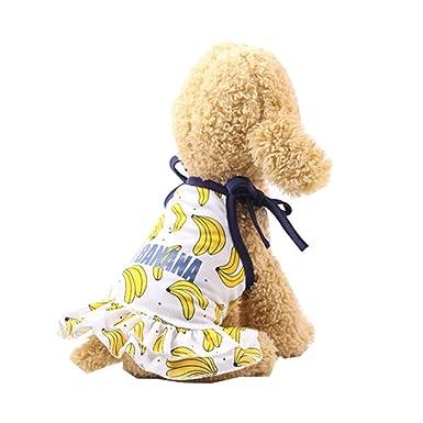 Conquro Primavera Verano Moda Verano Bonito Dulce Cachorro Perro ...