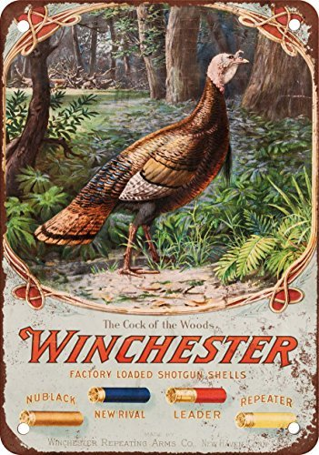 Tin Sign Shell (1905 Winchester Shotgun Shells Vintage Look Reproduction Metal Tin Sign 8X12 Inches)